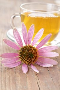 Echinacea Tea, Cold & Flu Survival Tips, Best Boomers and Beyond, LeAura Alderson, Herbal Teas, Natural Remedies, Cold & Flu Season, Virus, Sunshine for Vitamin D, chicken Soup, Manuka honey,