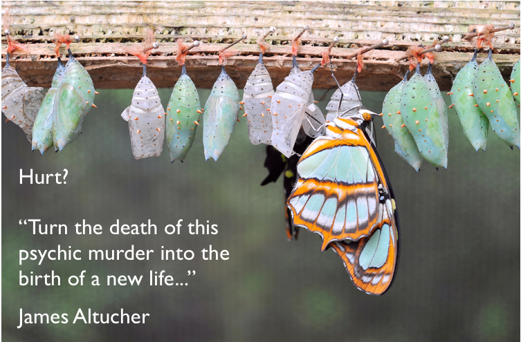 Altucher_NewLife_Butterfly