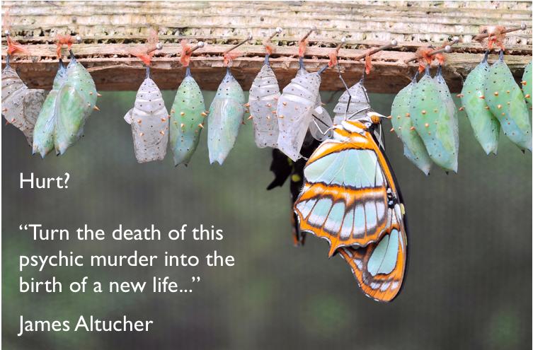 Altucher_NewLife_Butterfly